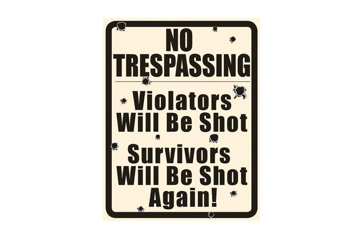 NO TRESPASSING SKILT